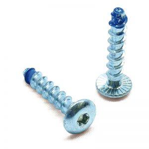 Blue-Tip dome head screwbolt