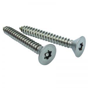 Pin-Torx-self-tapping-countersunk-screws