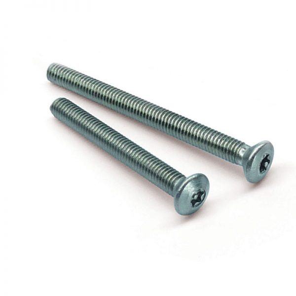 Pin Torx raised countersunk machine screws